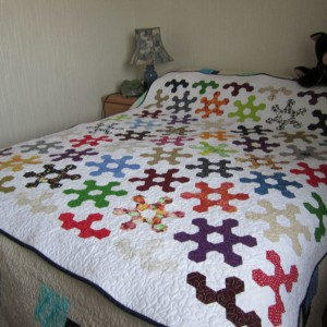 Surgical Quilts