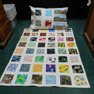 Play Games With Me Quilt - QUAG