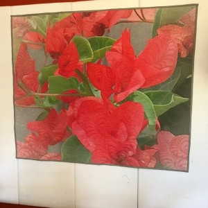 bougainvillea wall hanging