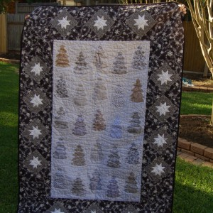 So THAT's What Happened Story Quilt