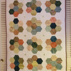 Shelly's Batik Hexies