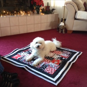 Adopted Doggie Quilt