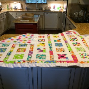 Crib quilt for new granddaughter.
