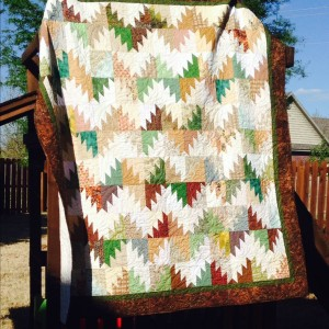 Scrappy Mountain Majesty Quilt